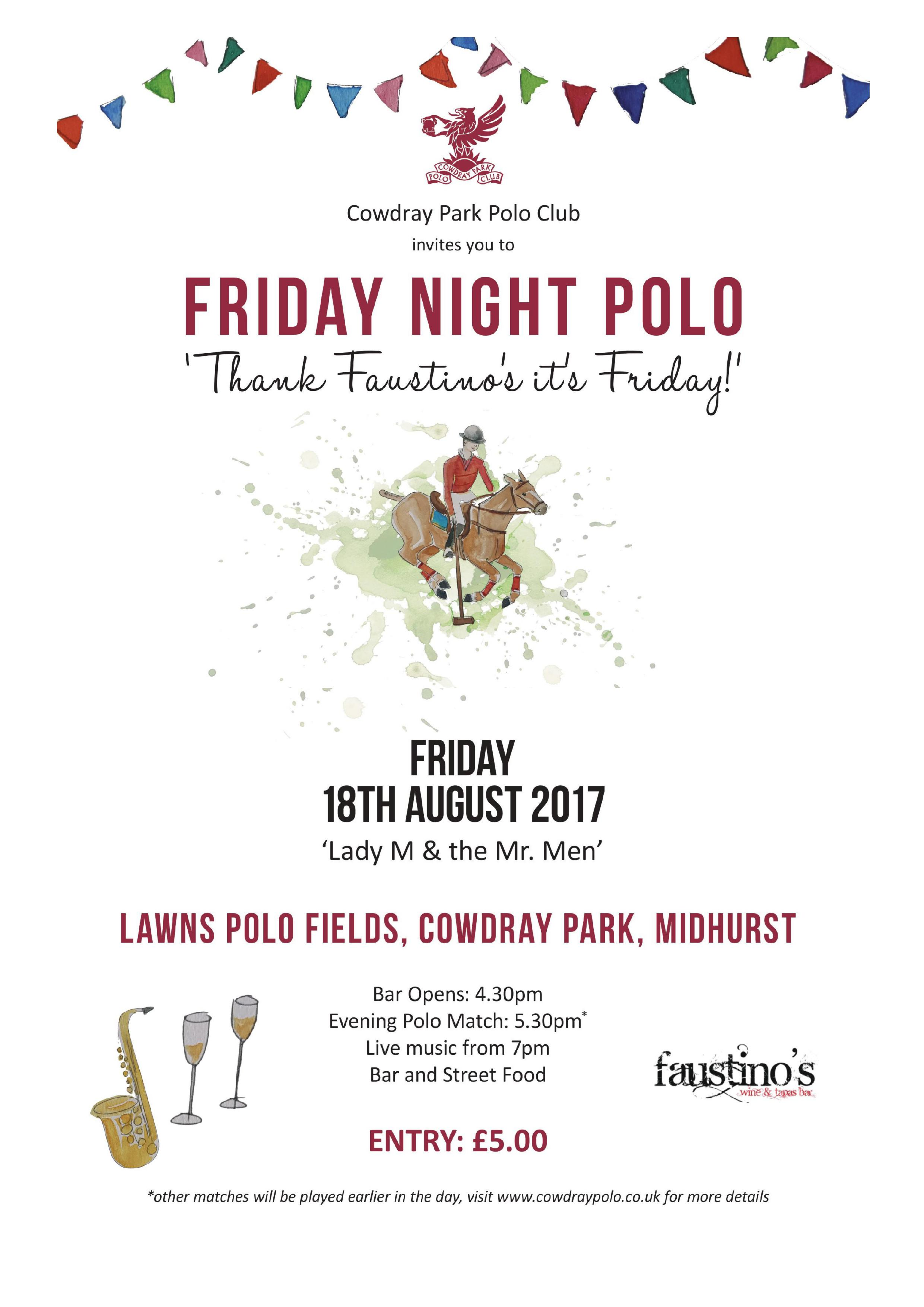 Friday Night Polo 18th August